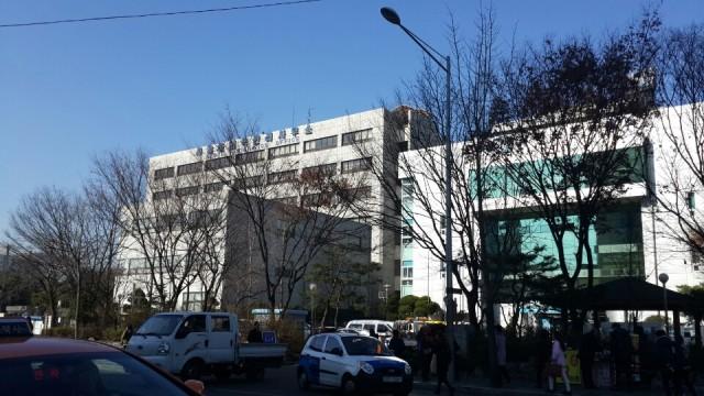 immi building